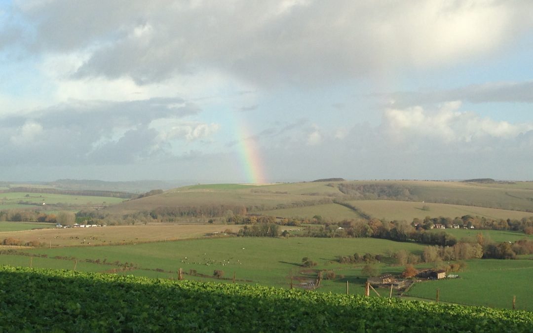 Stress Management Tips – the rainbow amongst stormy weather!